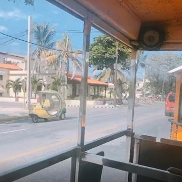 Paseo en Tren 2 (cocotaxi)